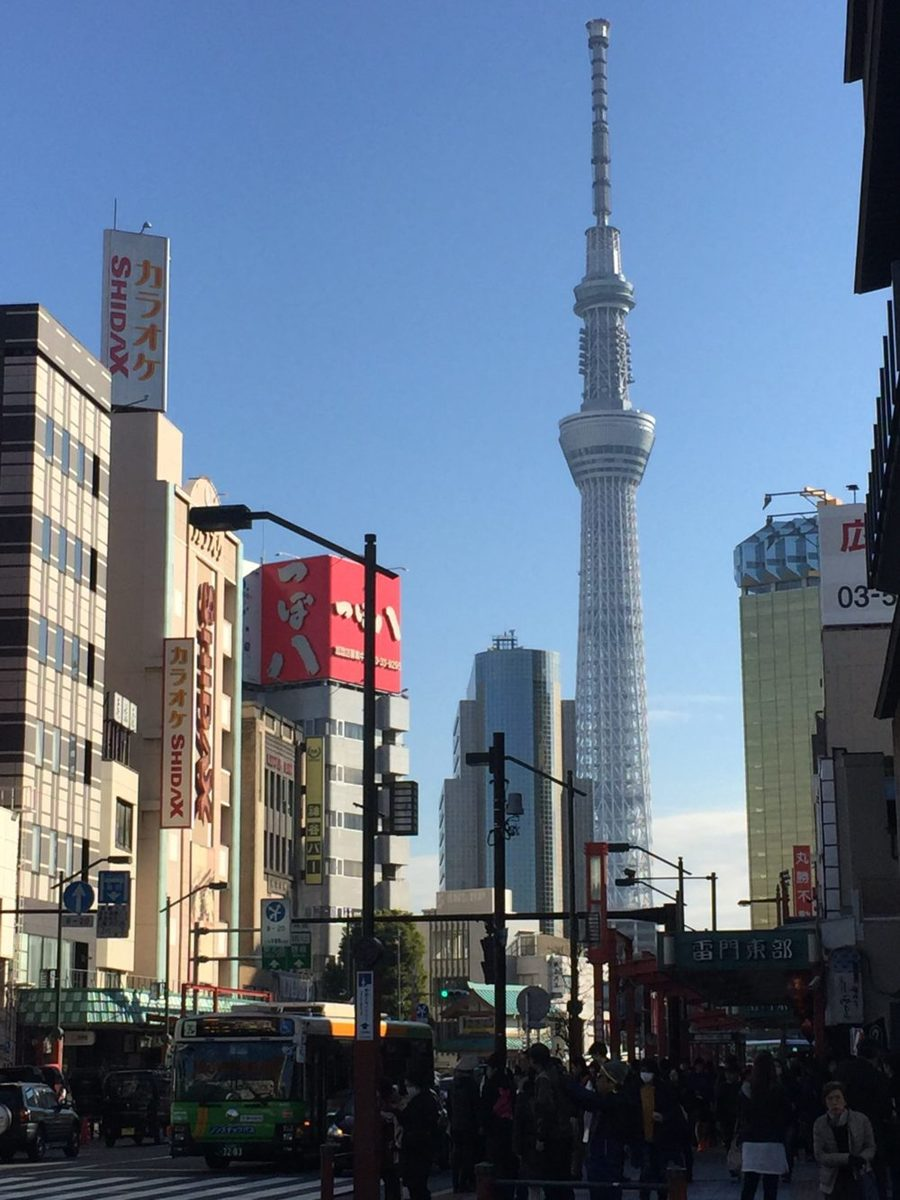 tokyo japan sky tower and city scene, what to do in tokyo japan, americans in tokyo, what to see