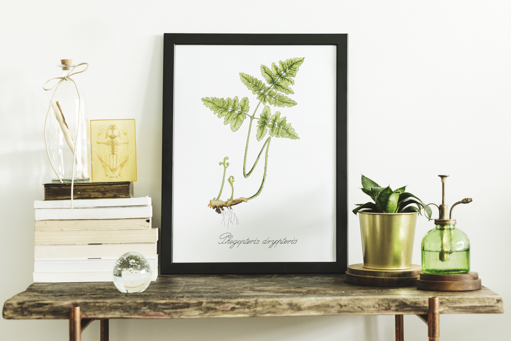 How to elegantly style your console table with natural elements, books, plants and a framed photo styled